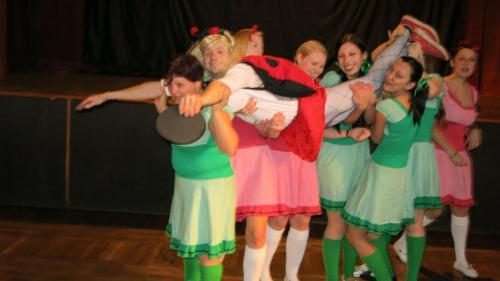 IIX. Společenský ples